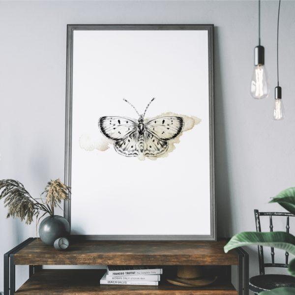 Plakat na ścianę motyl Kolory Ziemi
