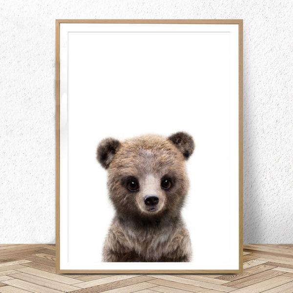 Plakat dla dzieci mały niedźwiadek