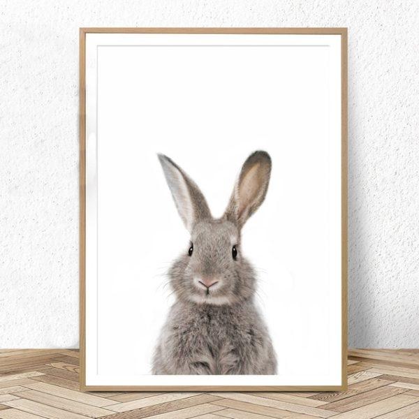 Plakat dla dzieci króliczek