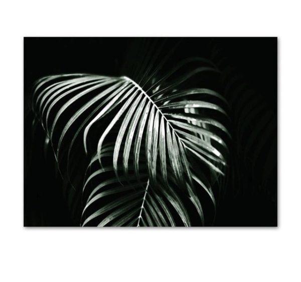 Plakat na ścianę plants in the dark