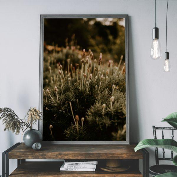 Plakat na ścianę Roślina Kolory Ziemi