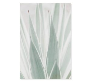 Plakat na ścianę Wam Beige Aloe
