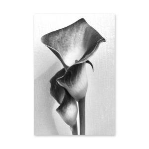 Plakat na ścianę Kwiat