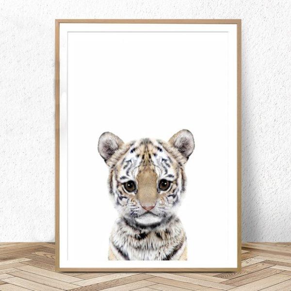Plakat dla dzieci Tygrysek