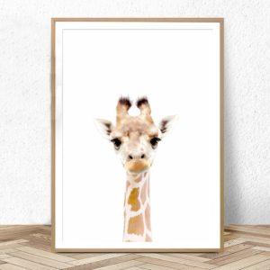 Plakat na ścianę Żyrafka