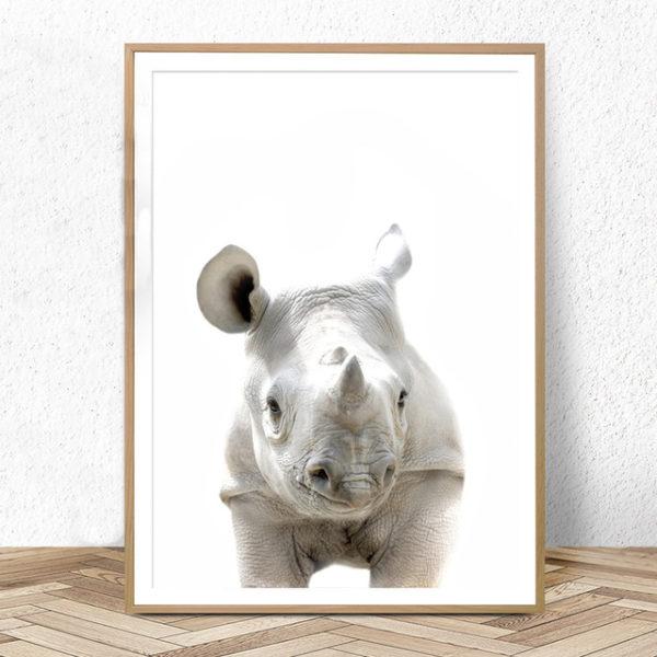 Plakat na ścianę mały Nosorożec