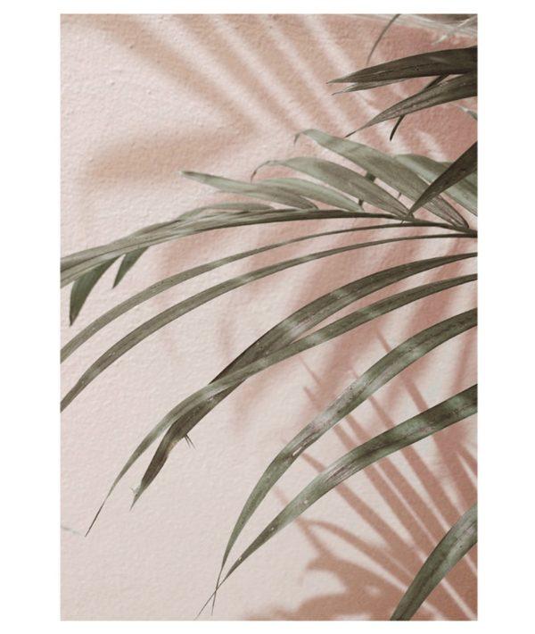 Plakat na ścianę Tropical Plants