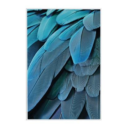 Plakat na ścianę Exotic Feather