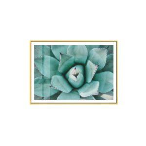 Plakat na ścianę Mint Succulent