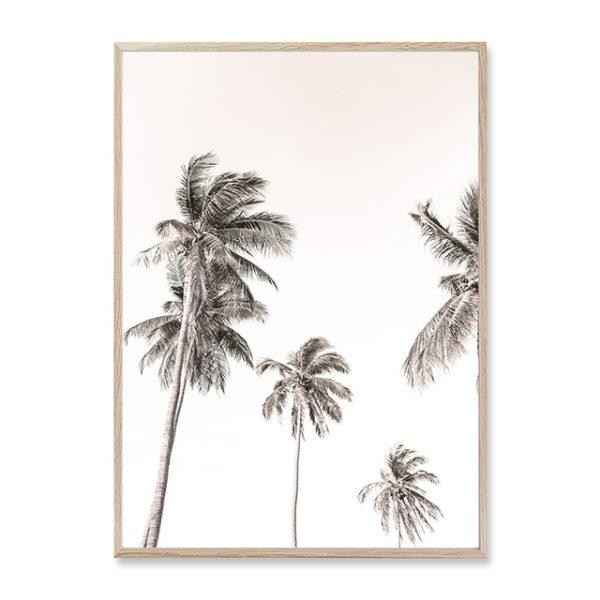 Plakat na ścianę Sunny Palms