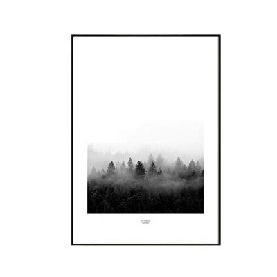 Plakat na ścianę Foggy Forrest