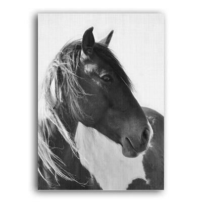 Plakat na ścianę Horse