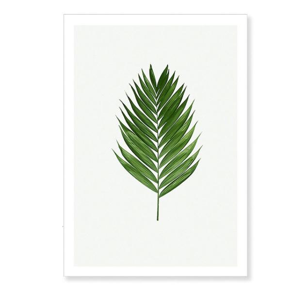 Plakat na ścianę Green Palm Leaf