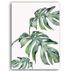 Plakat na ścianę Tropical Monstera