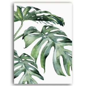 Plakat na ścianę Monstera Leaf