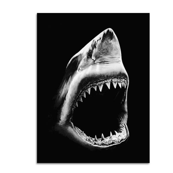 Plakat na ścianę Shark