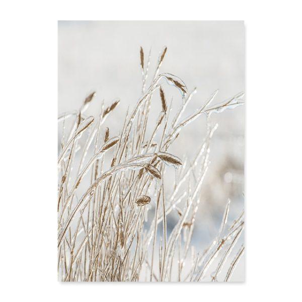 Plakat na ścianę Grain