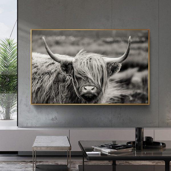 Plakat na ścianę Highland Catt Cow