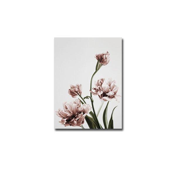 Plakat na ścianę Rose Tulip