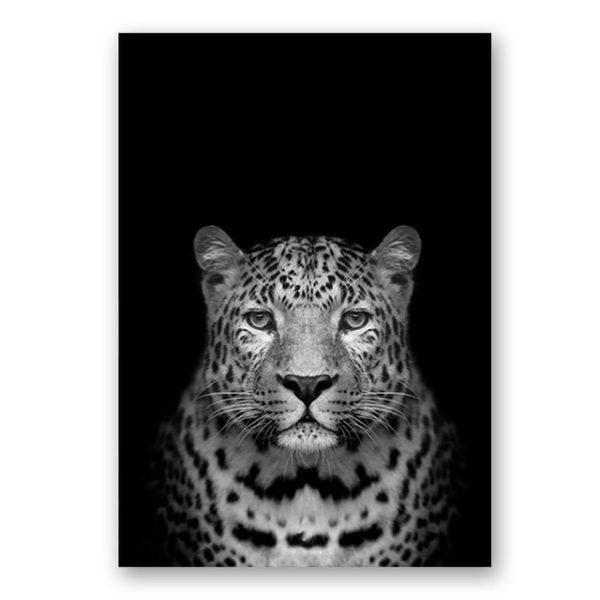 Plakat na ścianę Tiger 1